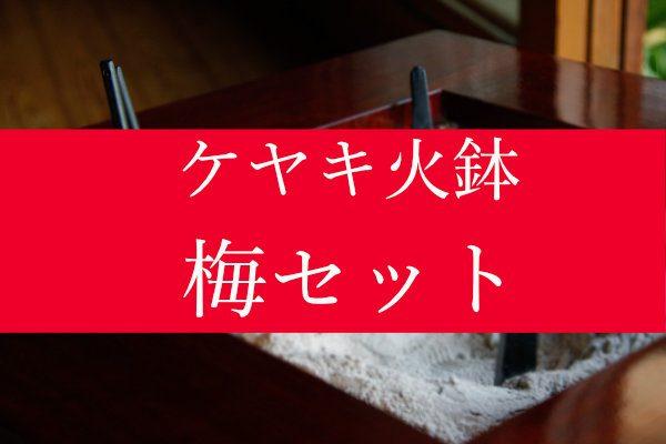 ケヤキ火鉢梅セット