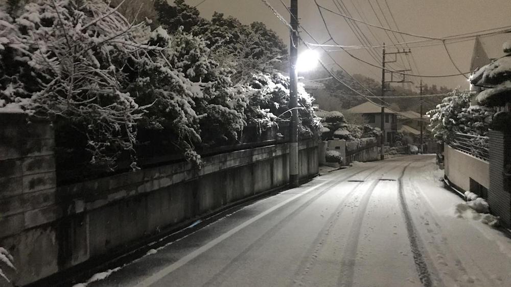八王子の雪