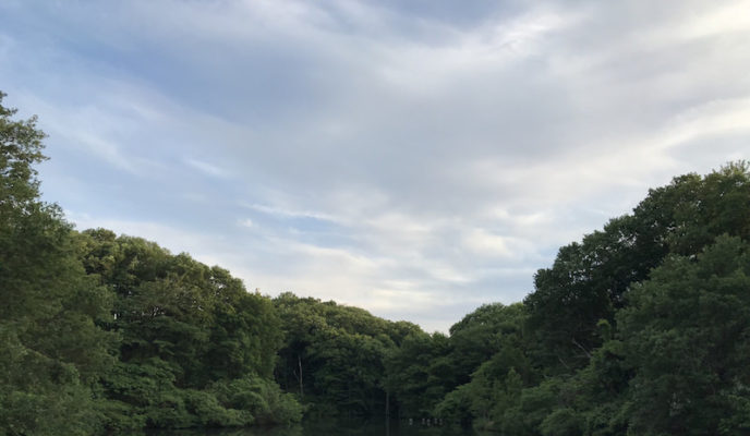 長池 南大沢