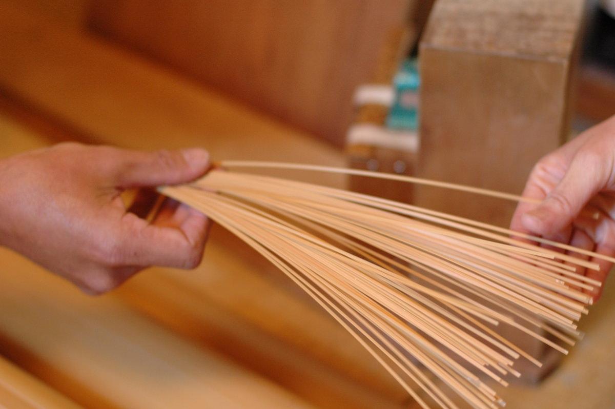 パスタのような竹